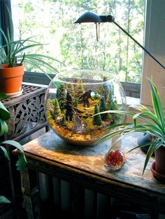 Sasquatch Terrarium good table scape idea