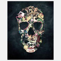 Fab.com   Vintage Skull Print 11x14