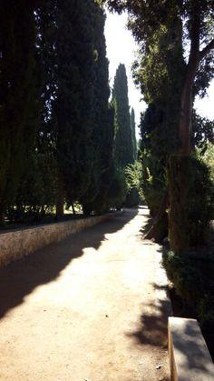 Parque Federico Garcia Lorca, Granada.España.Angela T.T.