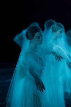 Artists of the Australian Ballet as the Wilis in Act 2 of Giselle. Photo by Lynette Wills