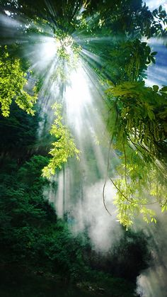 Beautiful Photos Of Nature, Beautiful Nature Wallpaper, Nature Images, Nature Photos, Beautiful World, Beautiful Images, Sunrise Pictures, Best Background Images, Landscape Pictures