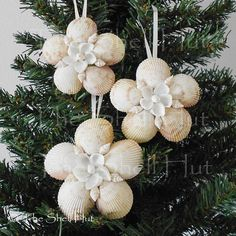 3 Seashell Snowflakes Christmas Ornament  Shell Flower Tropical Beach Nautical