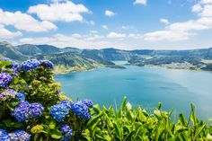 The Azores, Portugal 23 Affordable Vacations That Are Perfect For Budget Travelers Azores Portugal, Paradis Tropical, Affordable Vacations, Voyage Europe, Destination Voyage, Best Budget, Belize, Budget Travel, Where To Go