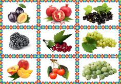 Rubrics, Fruits And Vegetables, Pattern, Games, Activities, Vegetables, Fruits And Veggies, Food, School