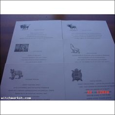 BEAUTIFULLY ILLUSTRATED ANIMAL PRAYRS/TOTOEMS BOOK OF SHADOW PAGES  $15.00