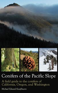 Conifers of the Pacific Slope: A Field Guide to the Conifers of California, Oregon and Washington by Michael Edward Kauffmann (to hunt many mushrooms you gotta know the trees)