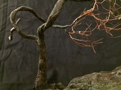 Winter is the best time of the year to see the actual branches and trunk of the tree - without the leafy covering Peace Art, Miniature Trees, One Tree, Wabi Sabi, Recycled Materials, Copper Wire, Bonsai, Sculpture Art, Rock