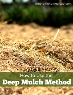 How to use the deep mulch method