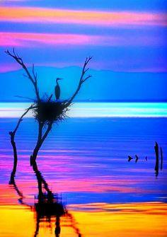 Key West sunset. Priceless.