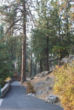 Mirabeau Park in the Spokane Valley features trails to explore surrounding the park.