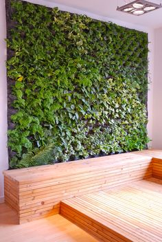 Living Wall- not sure how I feel about this...but it's kinda cool