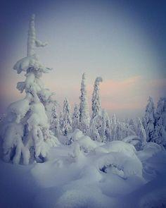 Dreamy winter world Levi, Finland En tiiä ymmärtääkö kukkaan muu, mutta tuolla tunturissa on niiiin kaunista I Love Snow, I Love Winter, Deep Winter, Lapland Finland, Winter Christmas, Adventure Time, Winter Wonderland, Beautiful Places, Ice