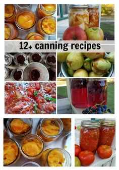 Check out these 12+ canning recipes to take your garden and fruits and turn them into your food year round. What is your favorite item to can? justmeregina.com