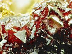 Descloizite, PbZn(VO4)(OH), Hochobir Karawanken Kärnten, Austria.  Pyramid-shaped red crystals. Fov 4.2 mm.  Collection: Lithothek Munich Micromounter.  Copyright : Bebo