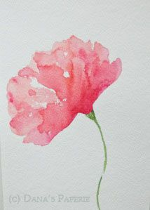 Pink Poppy Watercolor