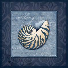 Navy Blue Shell I  Patty Sloniger