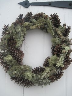 Pinecones and Moss- pure natraul beauty