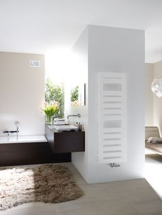 Radiator available through Beyond Bathrooms. From one of our suppliers Zehnder.