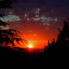 Sunset in Federal Way, WA 7/8/2012