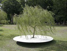 Una Bella Vita: Tim Knowles, Tree Drawings
