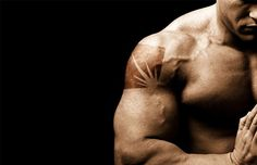Blog for bodybuilders and athletes. Top source for the latest news, views, training tips and advice as well as the latest supplements reviews to keep you a
