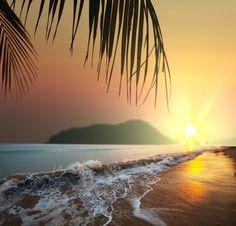 Beautiful Beach in Hawaii