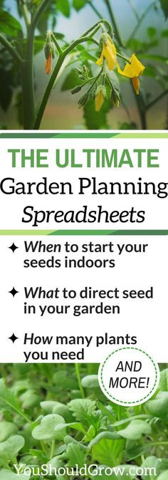 When to start seeds, direct seed, & how many plants you need. Get customized planting dates for your spring garden and fall garden. via /whippoorwillgar/