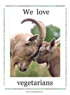 Animals love vegetarians