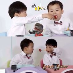 Song brothers
