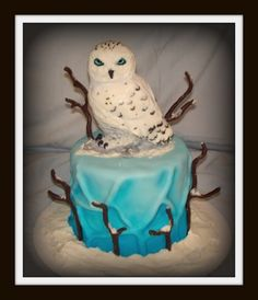 Beautiful Owl cake posted on Cake central. com