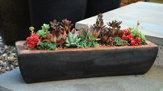 Feel free to pack a container fairly tight with succulents, because the trendy plants don't grow quickly and crowd out their neighbors the way other varieties do. Click through for more small garden ideas.