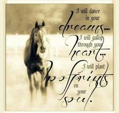 Dreams, heart, hoofprints and soul with the love of horses. Cowgirl Quote, Cowgirl And Horse, Horse Love, Cowboy Quotes, Equine Quotes, Equestrian Quotes, All The Pretty Horses, Beautiful Horses, Simply Beautiful