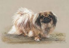Image result for pekingese paintings for sale