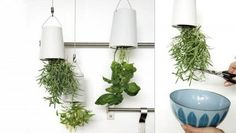 Boskke Sky Planter hangs upside down | Hometone