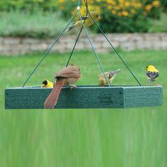Woodlink Ggplat Going Green Recycled Plastic Platform Bird Feeder