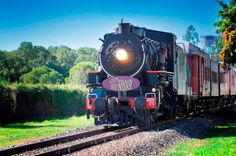 Take a nostalgic vintage steam train ride around Brisbane once a month on Steam Train Sunday Brisbane Events, Brisbane Kids, Cultural Experience, Places Of Interest, Steam Engine, Activities To Do, Train Rides, Business For Kids, Locomotive