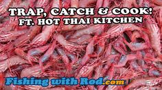 Trap, Catch and Cook ft. Hot Thai Kitchen   Fishing with Rod