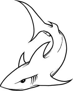 shark line drawing
