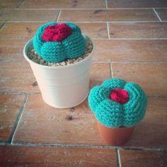 Crochet cactus  www.baonzaknits.com