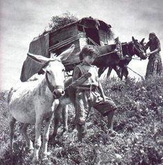 gypsies. travellers Romanies.