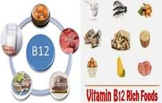 The Importance Of Vitamin B12 and The Richest Foods With It -  Vitamin B12 is very essential for your health, it is a water soluble vitamin that is responsible to maintain the health of your nerve system, brain and the creation of your red blood cells, deficiency of vitamin B12 on the long term can cause nerves damage and can even lead to paralysis, even a...