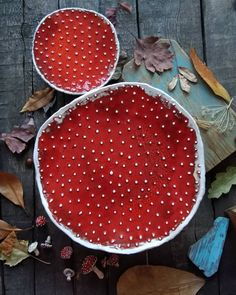 Ceramic Planters, Ceramic Bowls, Ceramic Pottery, Pottery Art, Ceramic Art, Pottery Ideas, Clay Bowl, Mushroom Art, Pottery Sculpture