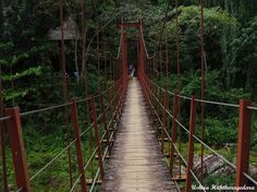 Ushira Hiththaragedara snapped and shared this awesome bridge with us on Google+