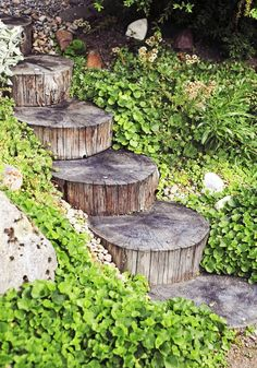 Love these stump stairs Backyard Garden, Backyard Landscaping, Woodland Garden, Diy Garden, Outdoor Gardens, Garden Steps, Garden Planning, Cottage Garden, Garden