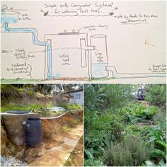 Building a biological DIY greywater system (with no reedbeds) - Milkwood: permaculture courses, skills + stories Permaculture Courses, Permaculture Design, Grey Water System Diy, Grey Water Recycling, Lawn Sprinklers, Water Collection, Water Management, Rainwater Harvesting, Earthship