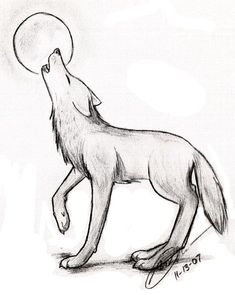 A Drawing Of A Wolf Simple Drawing Of A Wolf Easy Drawings Wolves PicYou can find Wolf drawings and more on our website.A Drawing Of A Wolf Simple Drawing Of A Wolf Easy Drawings Wolves Pic Easy Pencil Drawings, Pencil Drawings Of Animals, Art Drawings Sketches Simple, Drawing Ideas, Drawings Of Wolves, Drawing Tips, Drawings Of Dogs, Easy Simple Drawings, Cute Easy Animal Drawings
