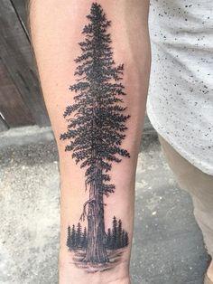 Tree Branch Tattoo, Tree Sleeve Tattoo, Blossom Tree Tattoo, Nature Tattoo Sleeve, Pine Tree Tattoo, Nature Tattoos, Redwood Tattoo, Pine Tattoo, Deer Tattoo