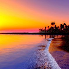 Beautiful sunset view of beach near sea and sand palm trees Strand Wallpaper, Sunset Wallpaper, Nature Wallpaper, Hd Wallpaper, Beautiful Wallpaper, Wallpaper Pictures, Palm Tree Sunset, Sunset Beach, Palm Trees