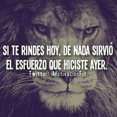 Positive quotes about strength, and motivational Motivational Phrases, Inspirational Quotes, Motivacional Quotes, Coaching, Little Bit, More Than Words, Spanish Quotes, Positive Quotes, Wise Words