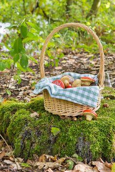 Herbstliche Pilz-Kekse mit Haselnuss Wicker Baskets, Picnic, Midi, Home Decor, Autumn, Cookies, Jewelry Making, Autumn Leaves, Peppermint